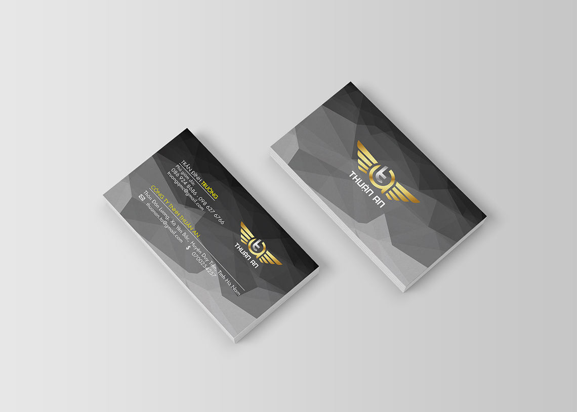 logo-thuanan3